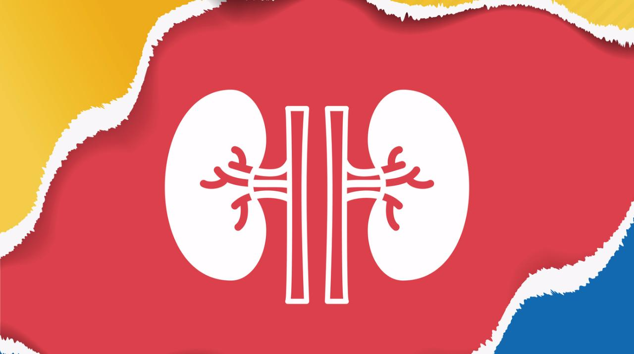 Overview of Kidney Transplantation
